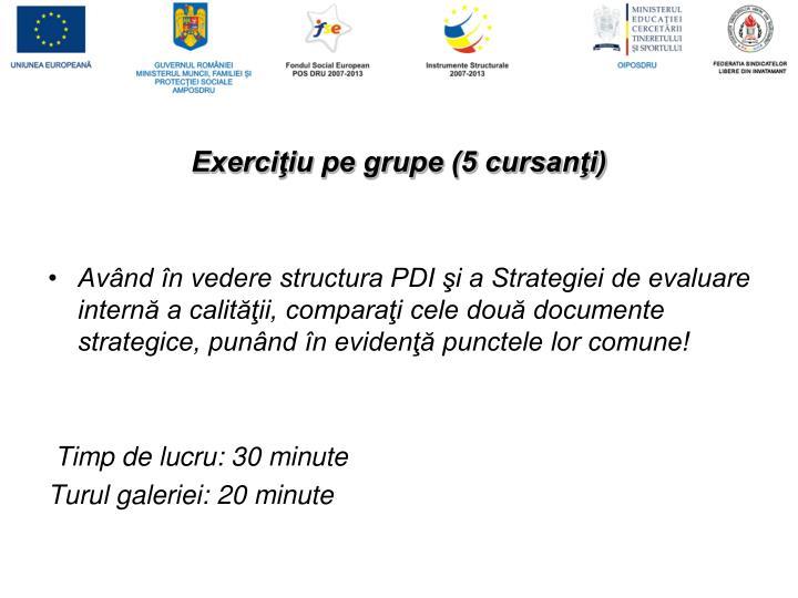 Exerciţiu pe grupe (5 cursanţi)