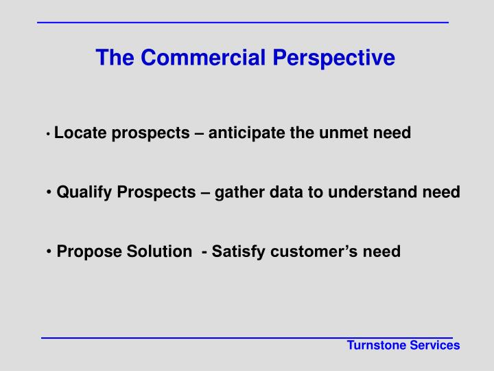 The Commercial Perspective