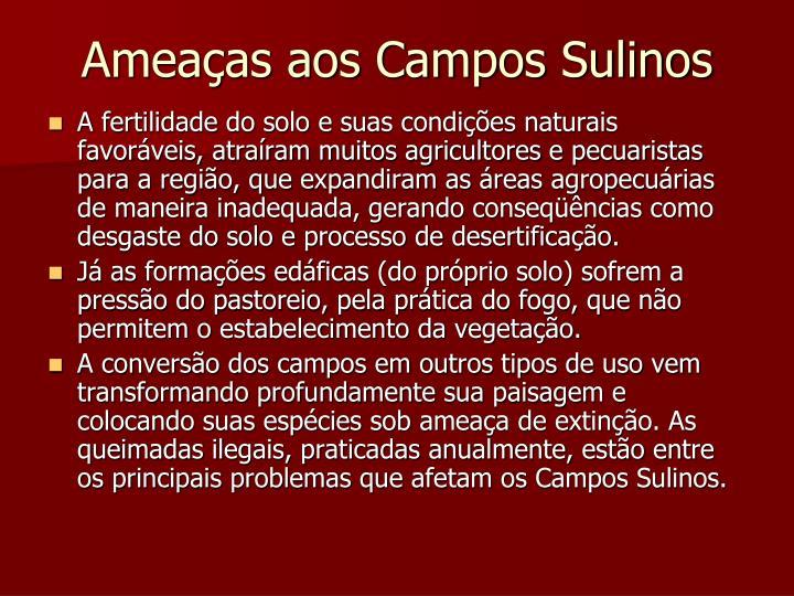 Ameaças aos Campos Sulinos