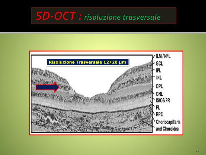 SD-OCT :