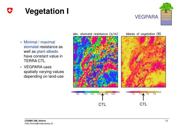 Vegetation I