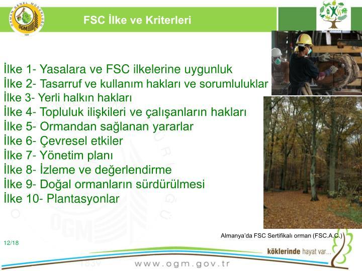 FSC İlke ve Kriterleri