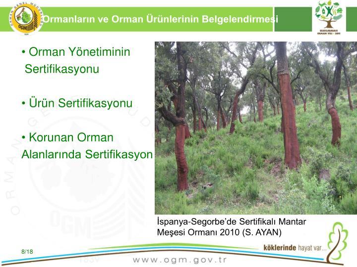 Ormanların ve Orman Ürünlerinin Belgelendirmesi