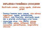 influenza pand mica h1n1 20093