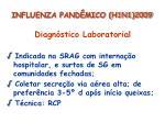influenza pand mico h1n1 200928
