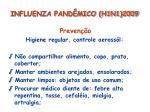 influenza pand mico h1n1 200933
