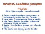influenza pand mico h1n1 200934