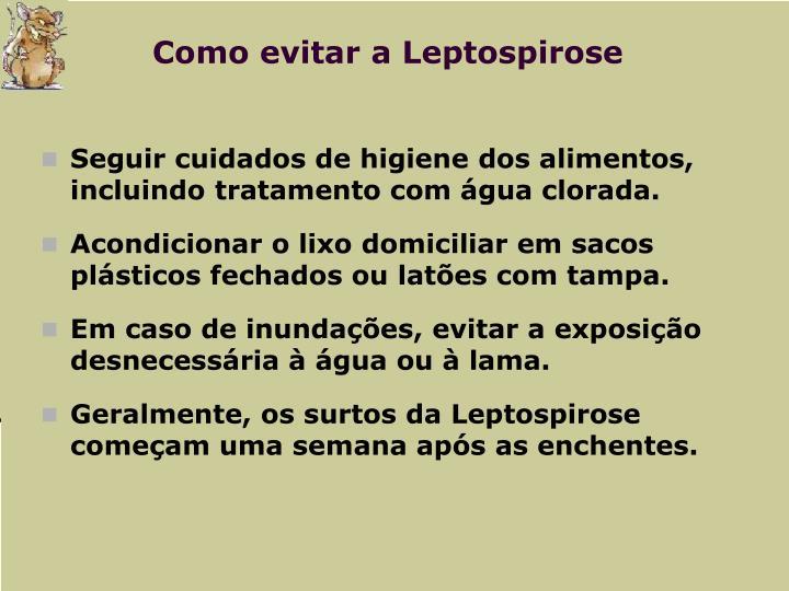Como evitar a Leptospirose