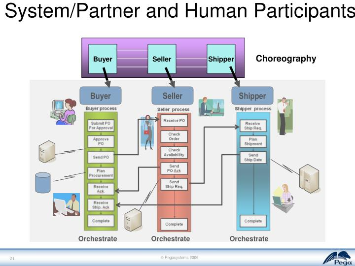 System/Partner and Human Participants