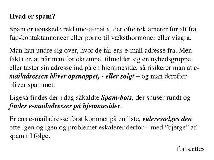 Hvad er spam?