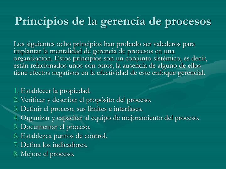 Principios de la gerencia de procesos