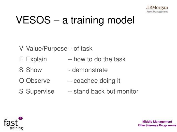 VESOS – a training model