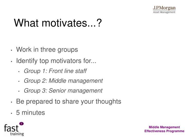 What motivates...?