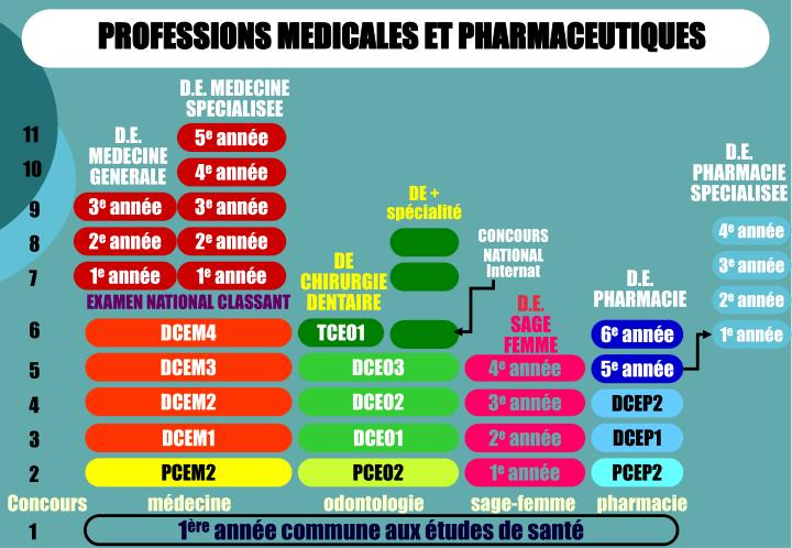 PROFESSIONS MEDICALES ET PHARMACEUTIQUES