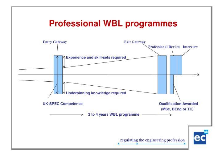 Professional WBL programmes