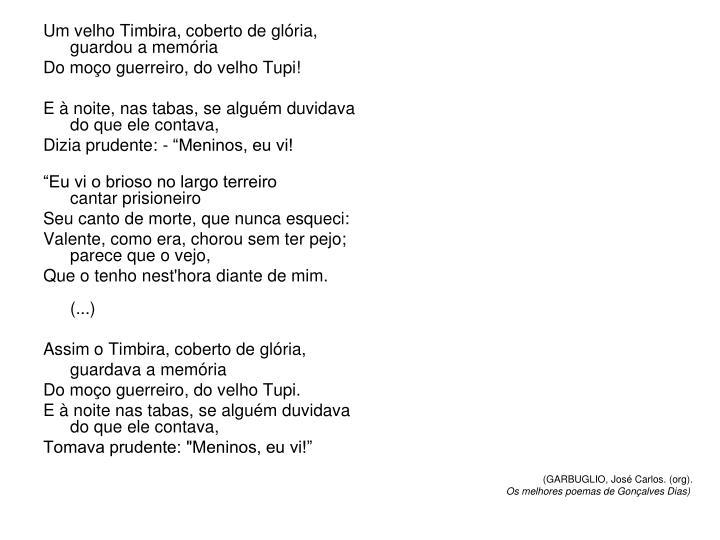 Um velho Timbira, coberto de glória,