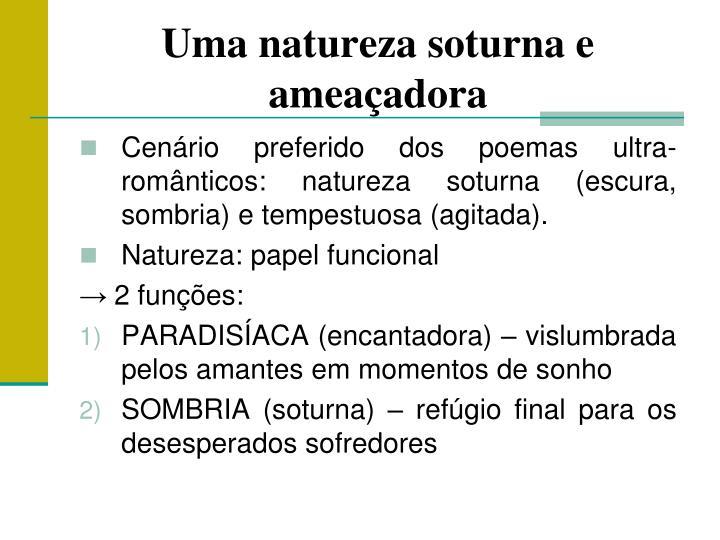 Cenário preferido dos poemas ultra-românticos: natureza soturna (escura, sombria) e tempestuosa (agitada).