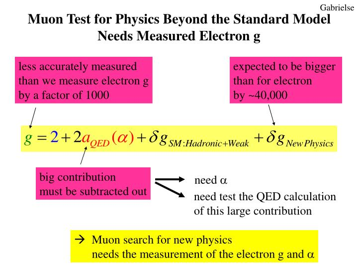 Muon Test for Physics Beyond the Standard Model