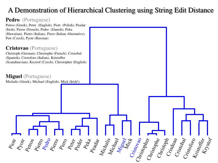 A Demonstration of Hierarchical Clustering using String Edit Distance
