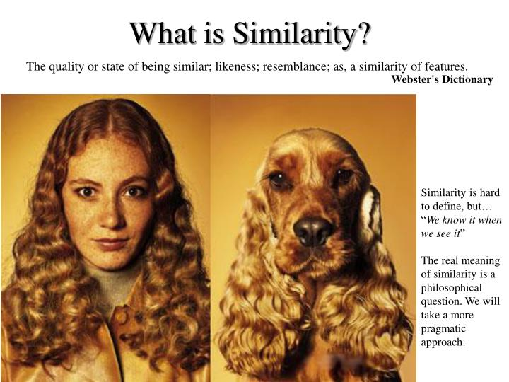 What is Similarity?