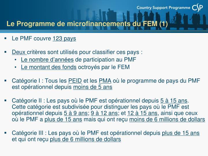 Le Programme de microfinancements du FEM (1)