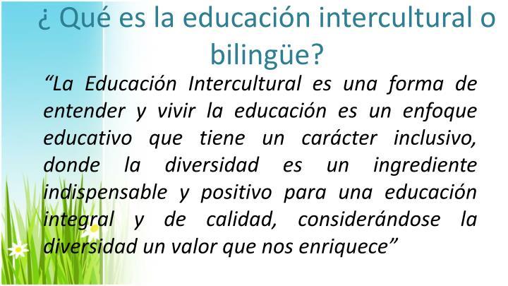 ¿ Qué es la educación intercultural o bilingüe?