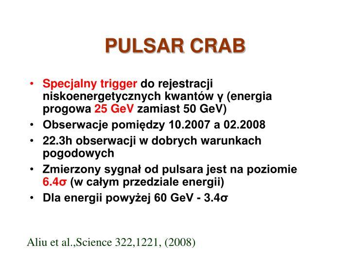 PULSAR CRAB