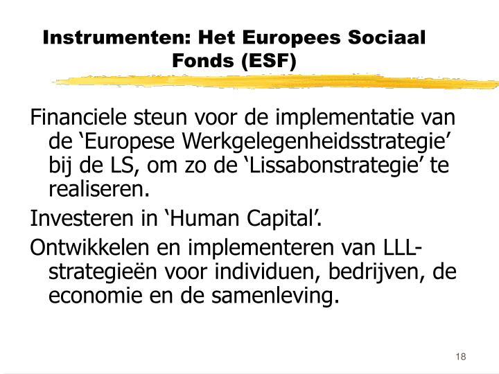 Instrumenten: Het Europees Sociaal Fonds (ESF)