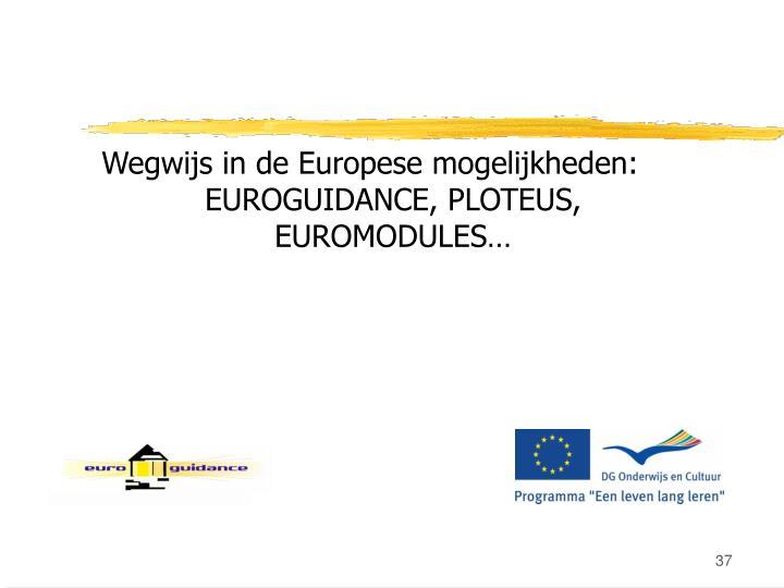 Wegwijs in de Europese mogelijkheden: EUROGUIDANCE, PLOTEUS, EUROMODULES…