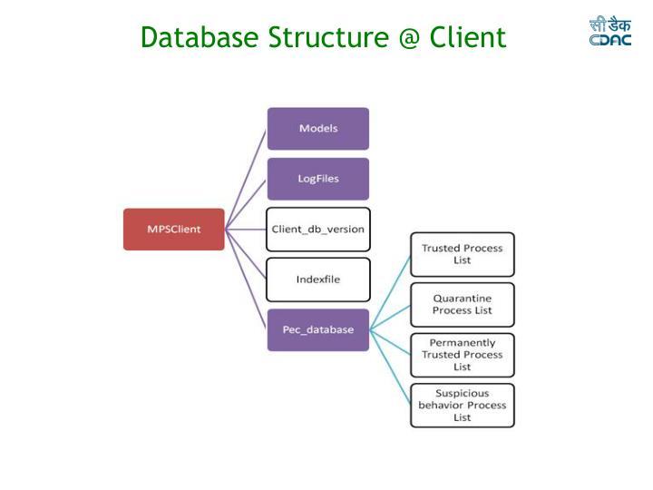 Database Structure @ Client
