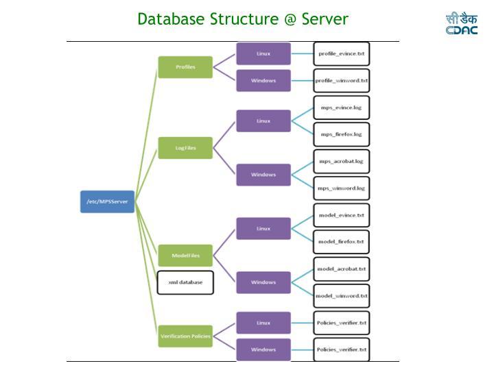 Database Structure @ Server