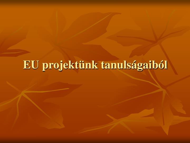 EU projektünk tanulságaiból