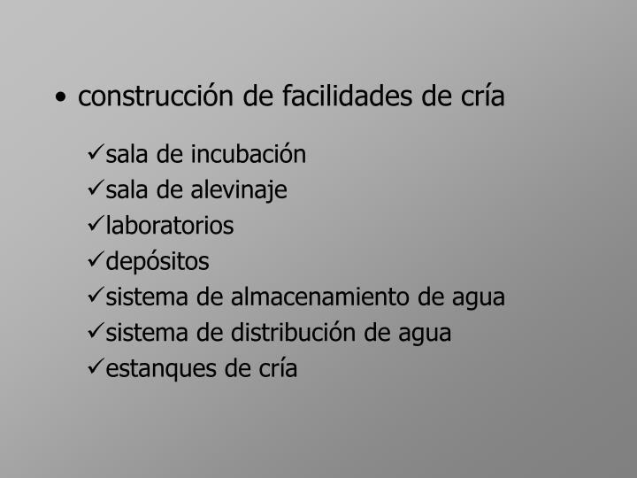 construcci