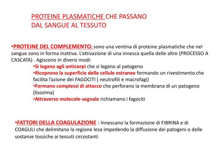 PROTEINE PLASMATICHE