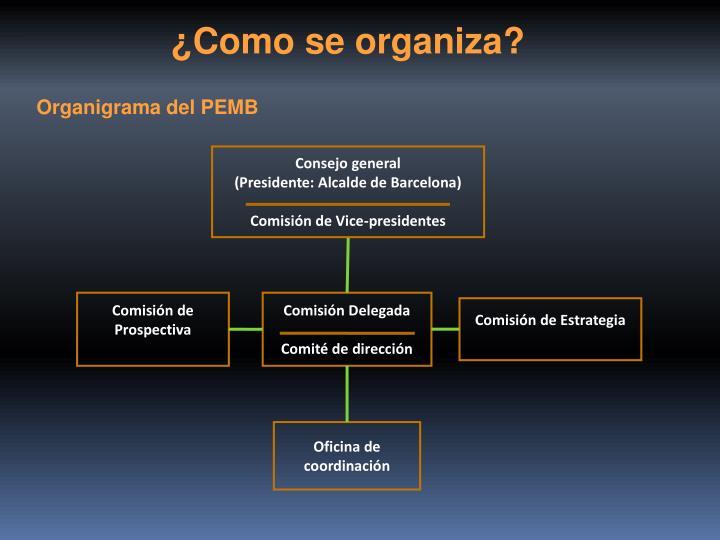 ¿Como se organiza?