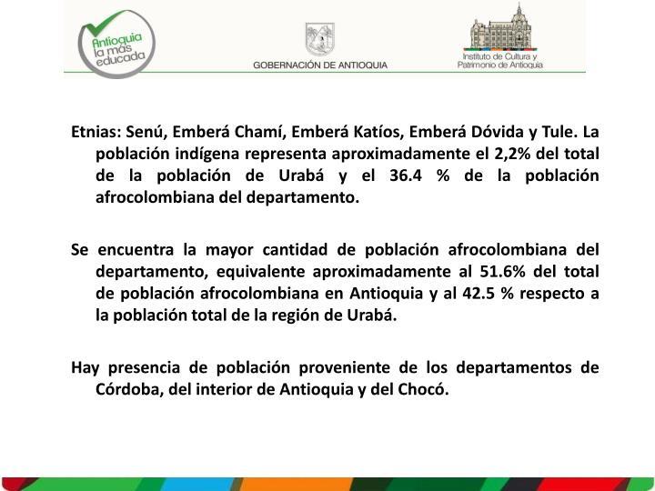 Etnias: Senú, Emberá Chamí, Emberá Katíos, Emberá Dóvida y Tule. La población indígena representa aproximadamente el 2,2% del total de la población de Urabá y el 36.4 % de la población afrocolombiana del departamento.