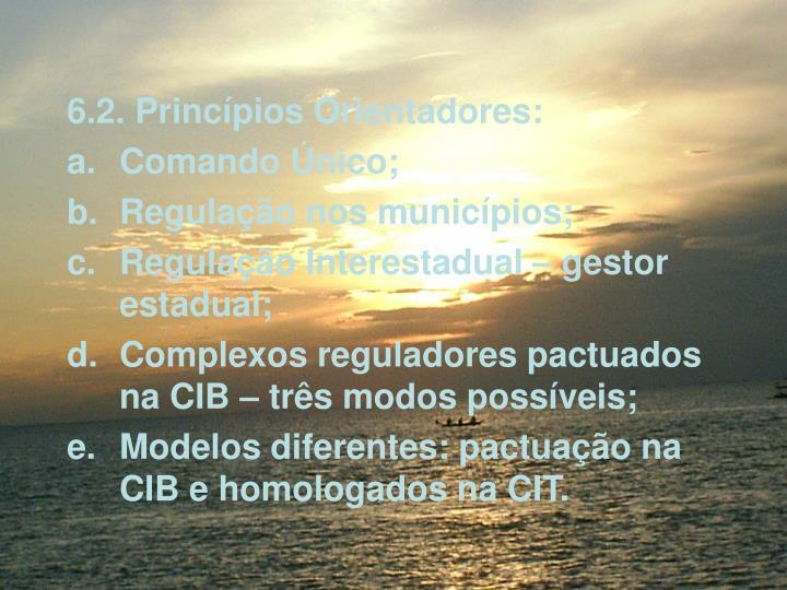 6.2. Princpios Orientadores: