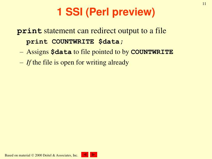 1 SSI (Perl preview)