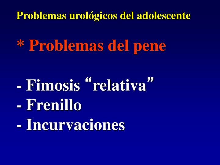 Problemas urológicos del adolescente