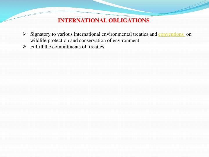INTERNATIONAL OBLIGATIONS