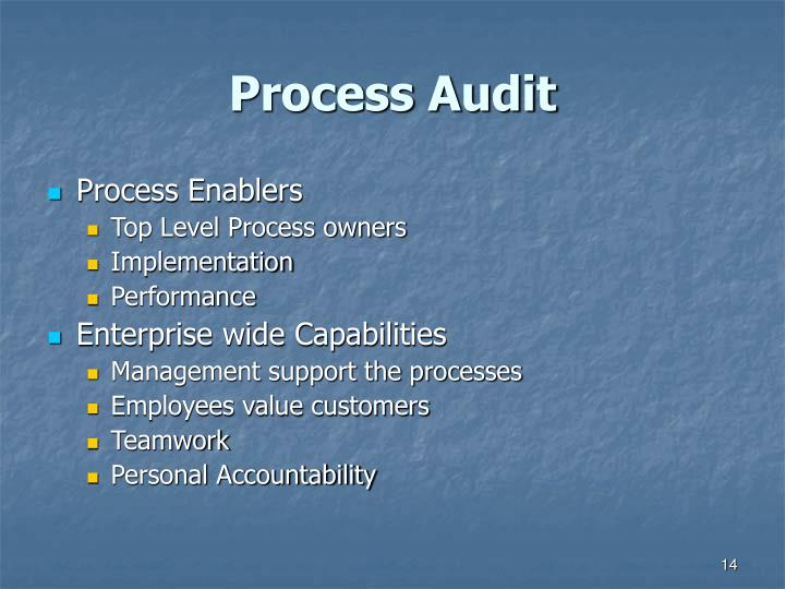 Process Audit