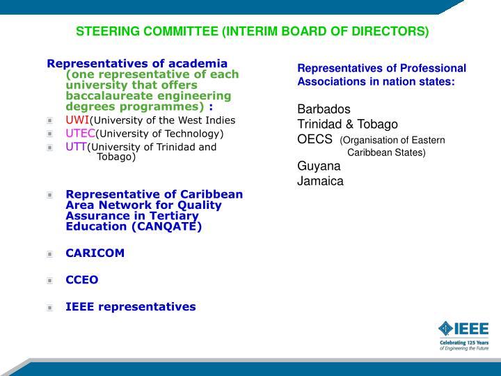 STEERING COMMITTEE (INTERIM BOARD OF DIRECTORS)