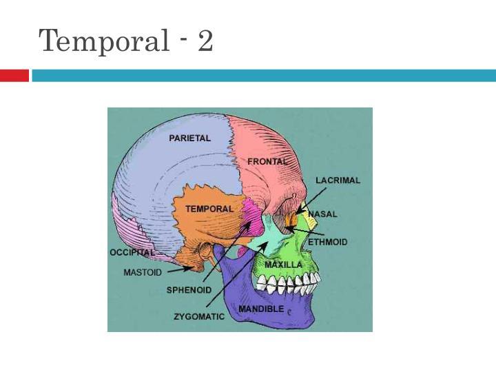 Temporal - 2