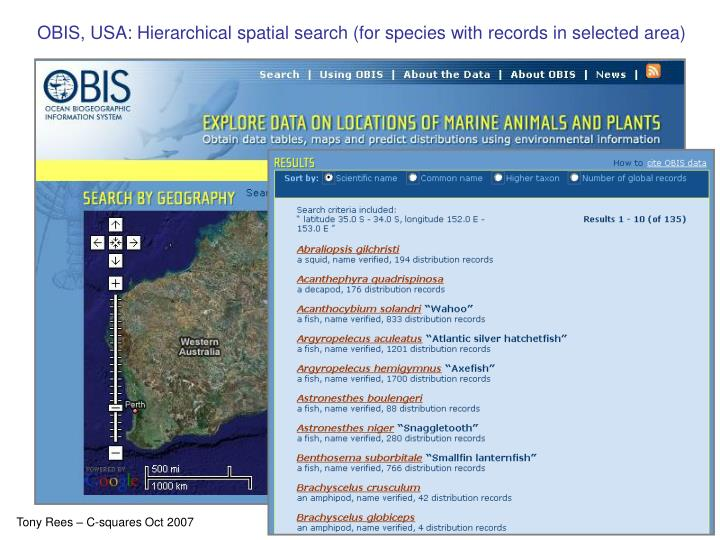 OBIS, USA: Hierarchical spatial search (for species with records in selected area)