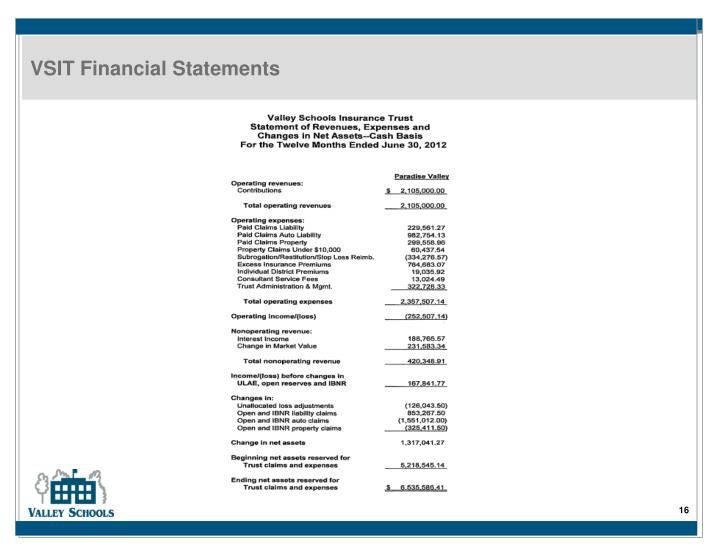 VSIT Financial Statements