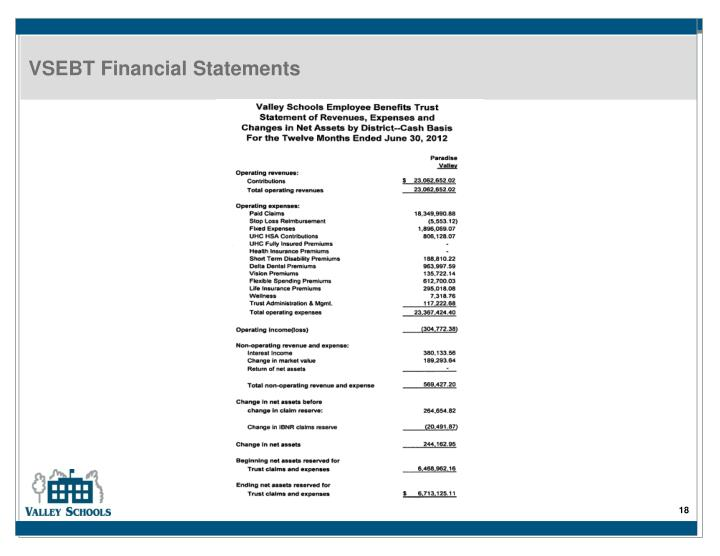 VSEBT Financial Statements