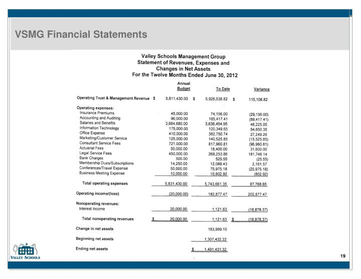 VSMG Financial Statements