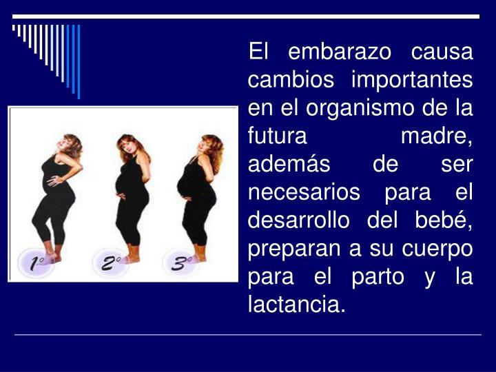 El embarazo causa cambios importantes en el organismo de la futura madre, además de ser necesarios para el desarrollo del bebé, preparan a su cuerpo para el parto y la lactancia.