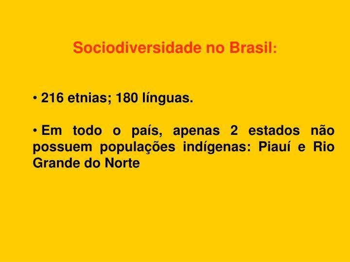 Sociodiversidade no Brasil