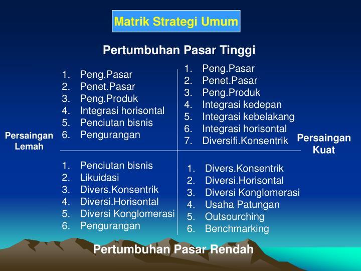 Matrik Strategi Umum